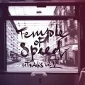 Temple Of Speed (Tinguely, Skor, Sterneis), 10 Tracks - Vol. 5 (mit E.K.R. & Baze & Kalmoo & Stereo Luchs)