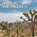 V/A, Down In The Valley Vol. 2
