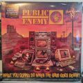 Public Enemy, What You Gonna Do When The Grid Goes Down?